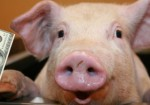 Student Loan Shark Smart Pig Faces Backlash